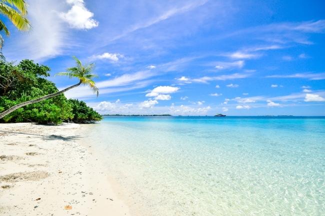 Punta cana verano 2021